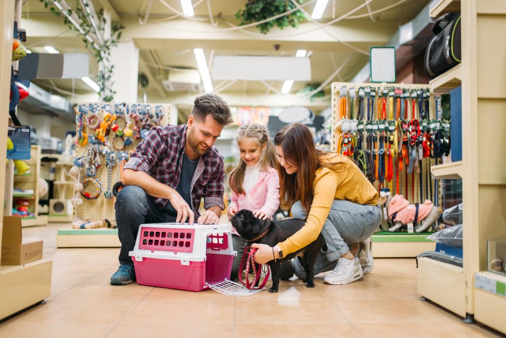 Pet Retail